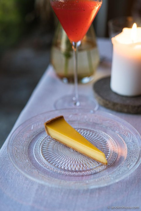 Solaris grape tart for dessert.