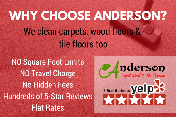 Seattle Area Carpet Cleaning Services