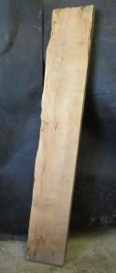 "#157. Monterey Cypress (10""W x 72""L x 3""T) $35"