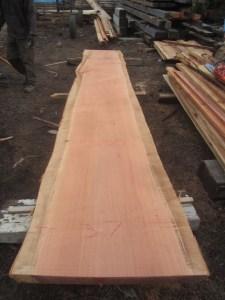"""#500 Redwood (37""""W x 202""""L x 2.75""""T) $2,139"""