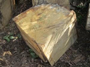 """#45. Oak (18"""" x 18"""" x 19"""")"""