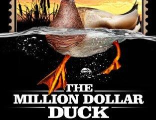 MILLION DOLLAR DUCK, THE 11