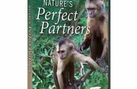 NATURE'S PERFECT PARTNERS 13