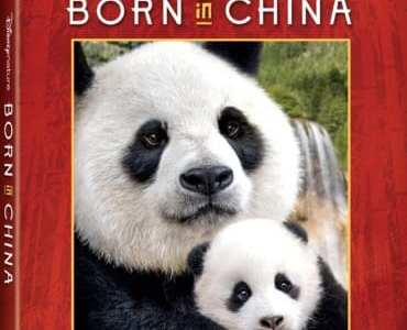 Disney's Born in China on Digital and Blu-ray Combo Pack on Aug. 29. 27