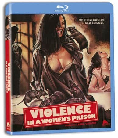 VIOLENCE IN A WOMEN'S PRISON 1