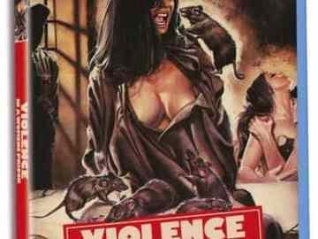 VIOLENCE IN A WOMEN'S PRISON 43