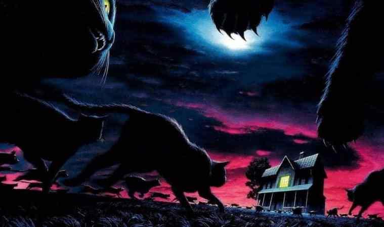 Sleepwalkers (1992): Collector's Edition 3