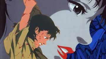 Perfect Blue review: Anime I Like 78