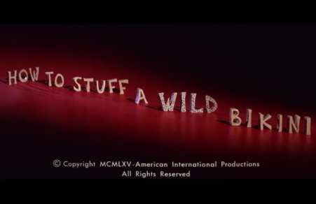 How To Stuff A Wild Bikini [Review] 25