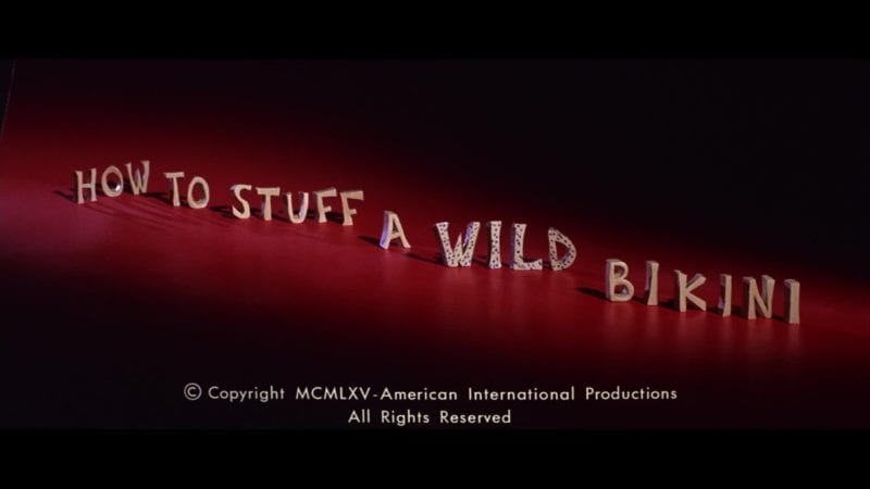 How To Stuff A Wild Bikini [Review] 7