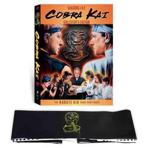 Cobra Kai set