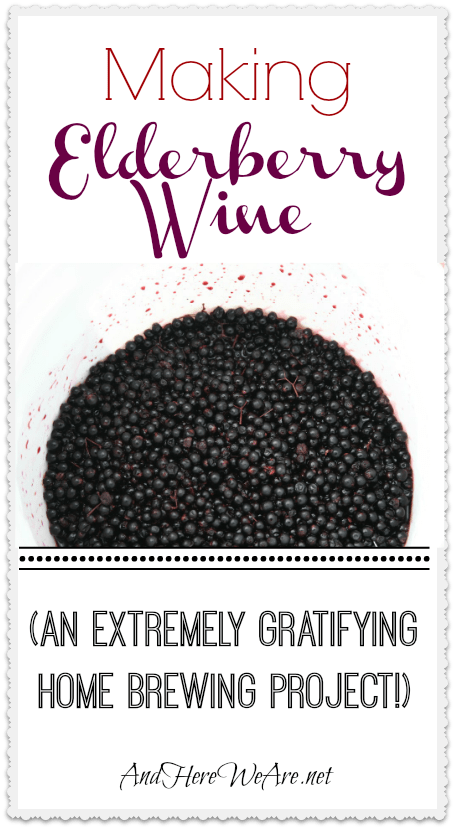 Making Elderberry Wine And Here We Are...