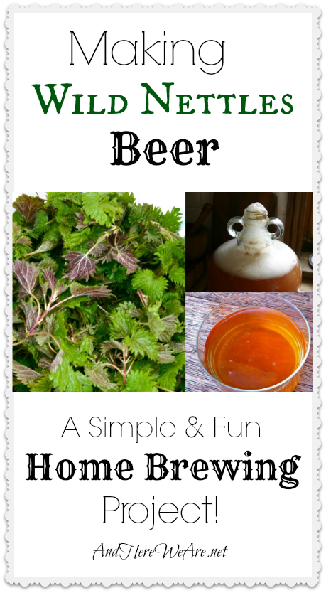 Making Wild Nettles Beer