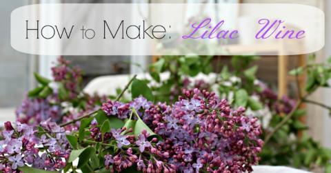 Lilac-Wine
