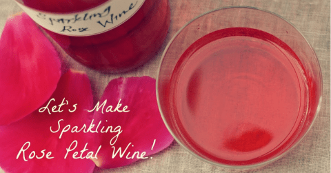 Sparkling-Rose-Petal-Wine
