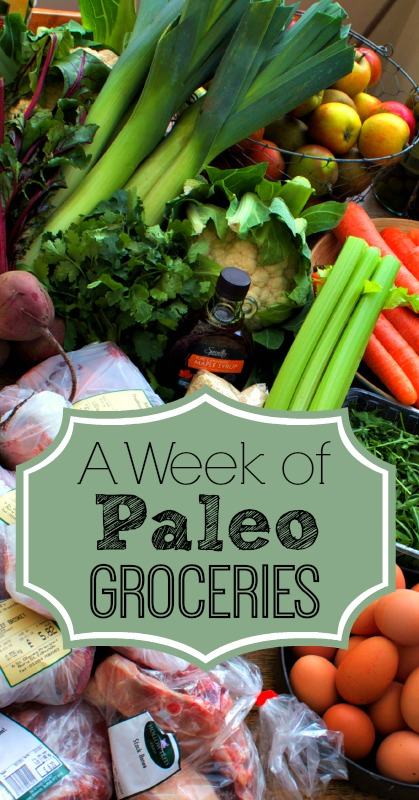 A Week of Paleo Groceries from And Here We Are...