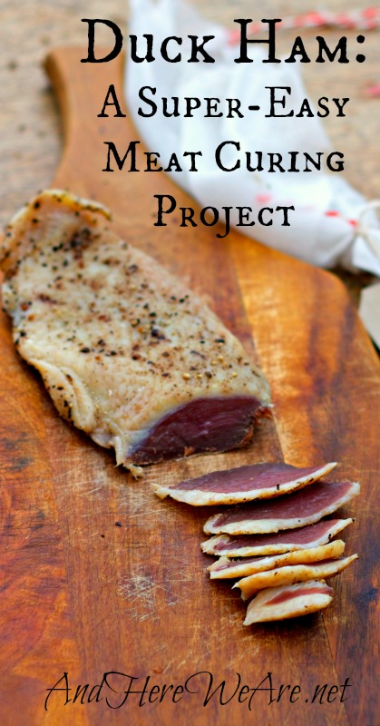 Duck Ham A Super-Easy Meat Curing Project from And Here We Are