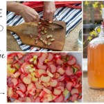 Making Rhubarb Wine at Home