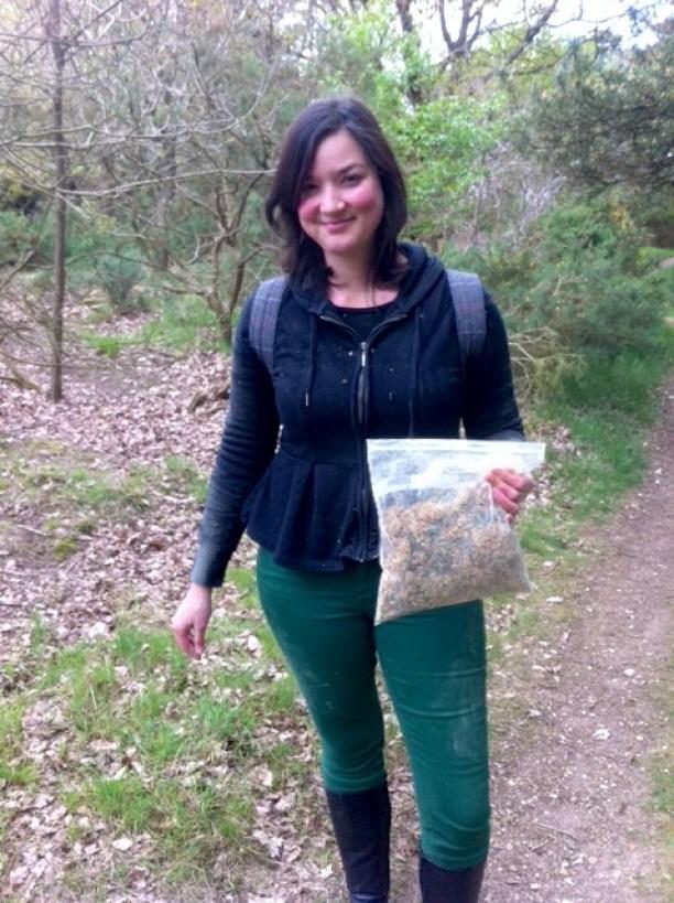 Harvesting Pine Pollen