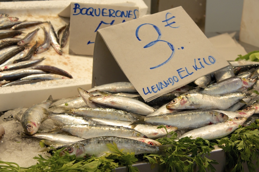 Fresh Sardines at the Cadiz Market