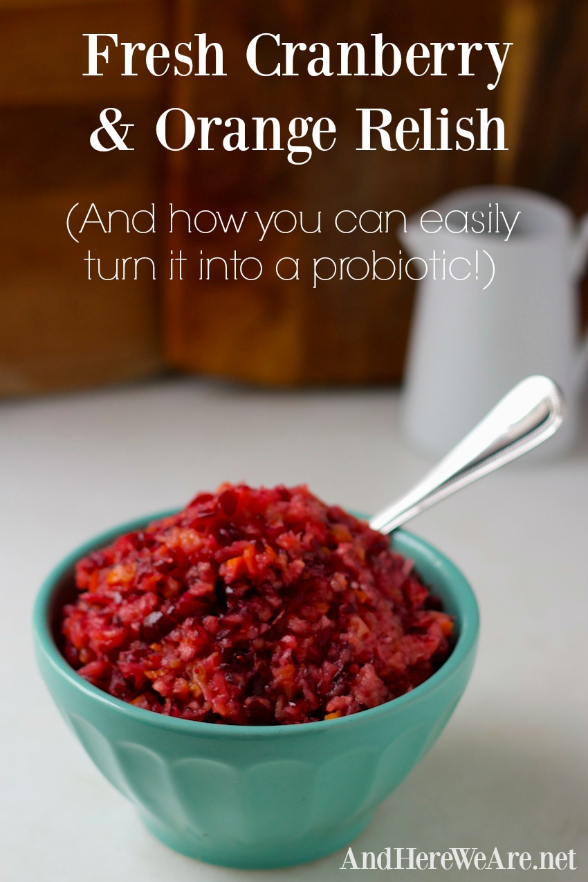 fresh-cranberry-and-orange-relish