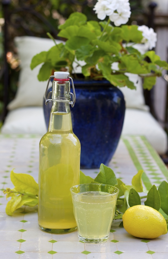 Homemeade Lemon Leaf Soda Recipe