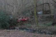 car-plantation50