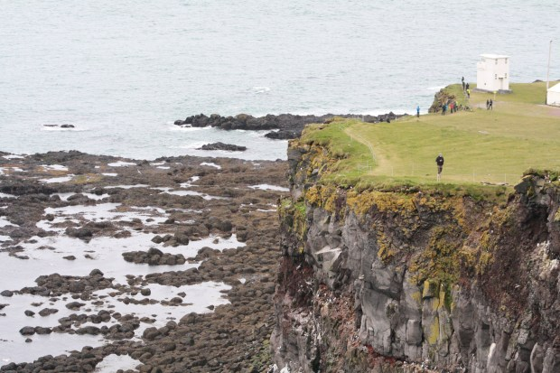 How to See Puffins at the Latrabjarg Cliffs | www.andiamoaurora.com