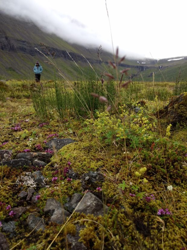 Valagil West Fjords Hike in Iceland