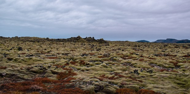 lava fields | REYKJANES PENINSULA TRAVEL GUIDE AND ITINERARY | www.andiamoaurora.com | Explore Iceland's Reykjanes Peninsula with a one-day road trip with more than 20-must see sites