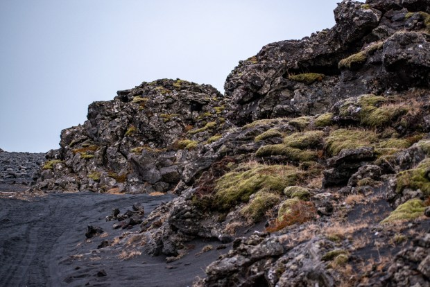 Why You Shouldn't Skip the Reykjanes Peninsula | Andiamo Aurora | The Reykjanes Peninsula: closest to the airport and the BEST day trip you'll experience in Iceland.  There's so much to see on this peninsula (besides the Blue Lagoon), including epic coastlines, geological formations, birdlife, lighthouses, picturesque villages, isolated Instagramable churches, and more. Don't write off this lava-covered landscape!