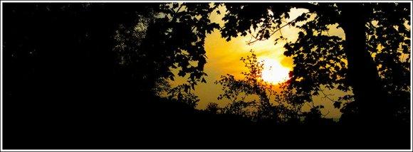 last_sunrays