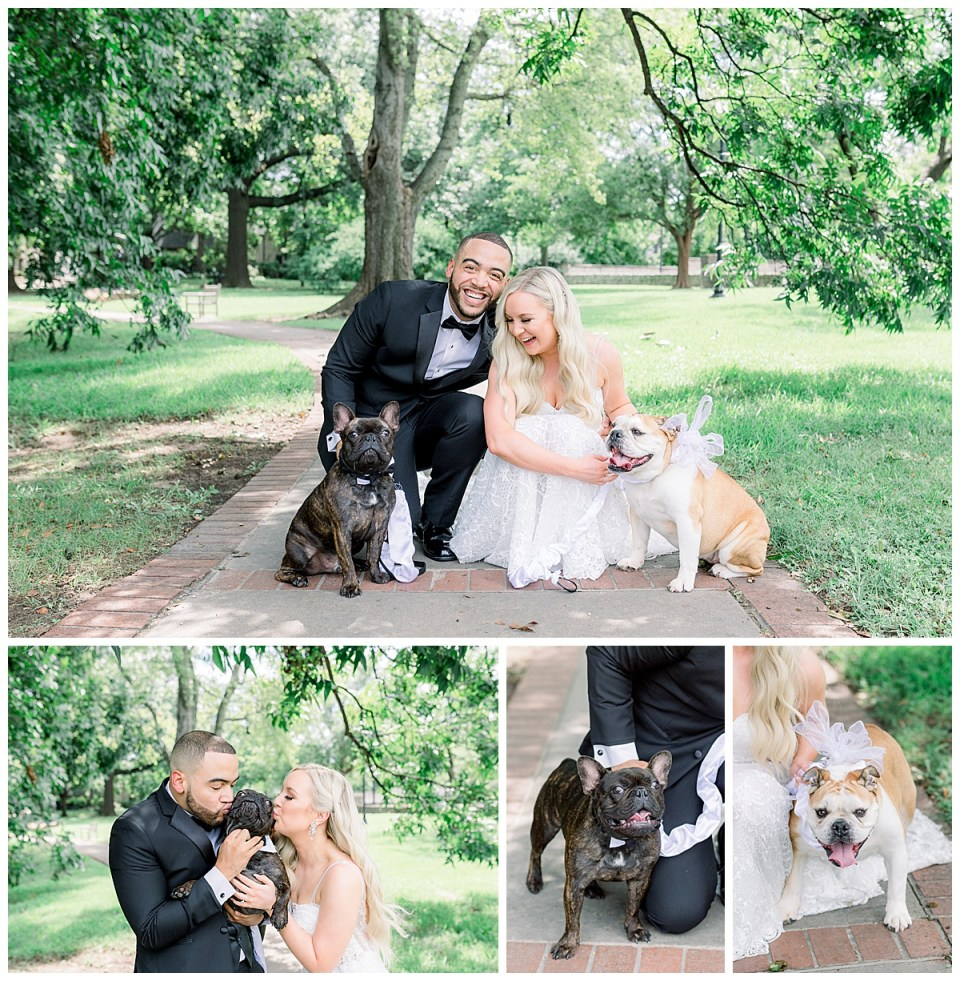 Bride and groom with their furbabies| Tulsa wedding| dogs at wedding| Andi Bravo Photography
