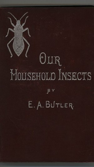 Our Household Insects: An Account of the Insect-Pests Found in Dwelling-Houses
