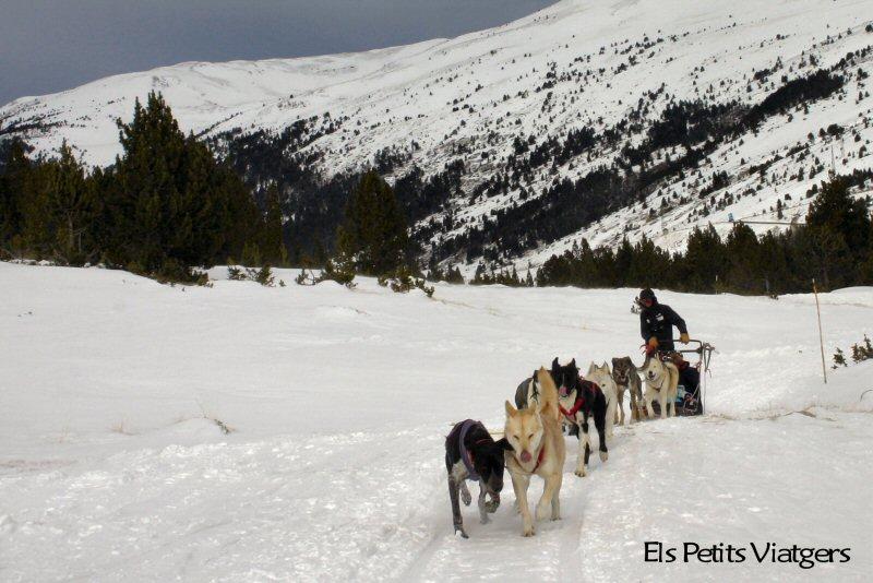 Actividades alternativas al esquí: moto de nieve y mushing