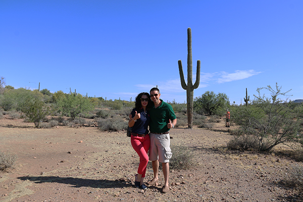desierto cactus Scottsdale