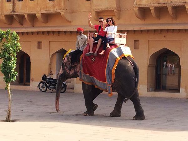Lomos de un elefante India