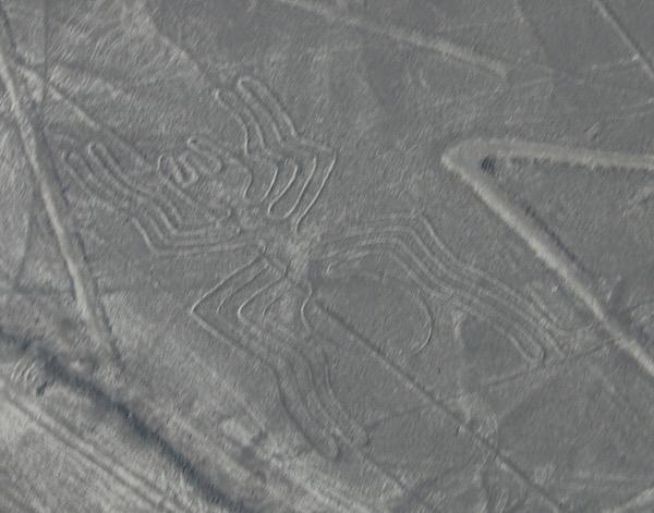 Araña Líneas Nazcas-Andorreando por el Mundo