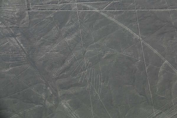 Cóndor Líneas Nazcas-Andorreando por el Mundo
