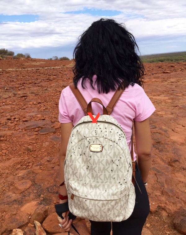 Moscas P.N Uluru- Kata Tjuta-Andorreando por el Mundo