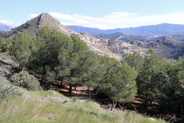 Parque Periurbano Cerro del Toro
