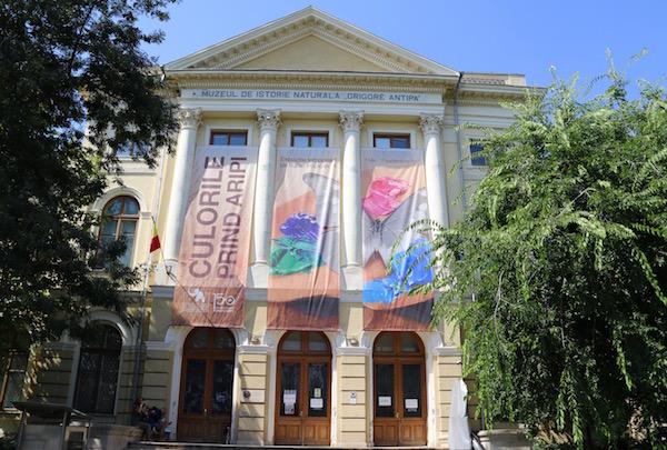 Museo historia Grigore Antipa