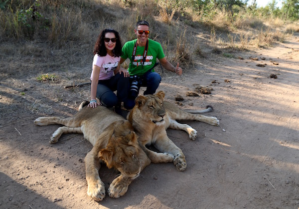 Leones Lion Encounter