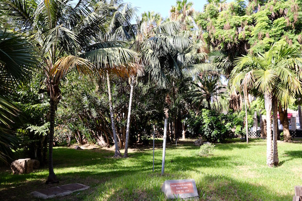 Parque Majuelo.
