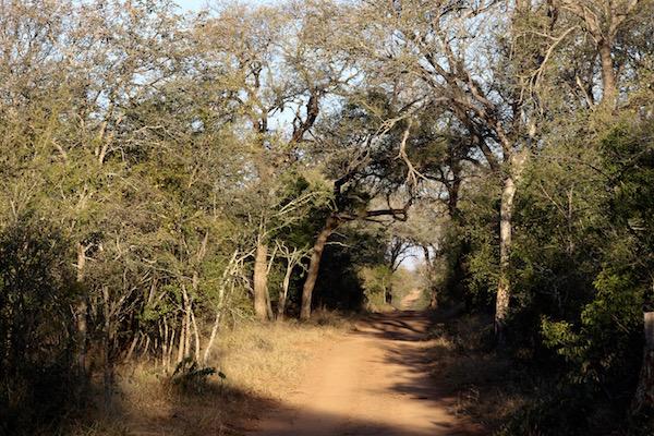 Reserva Kapama