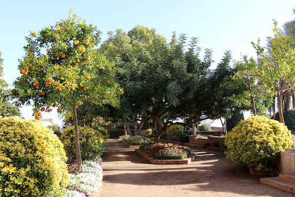 Jardines de la Galera