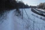 Unberührte Wildnis zwischen Autobahn und Bahnlinie