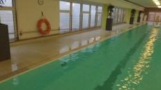 Neue Rekorde im Schwimmen
