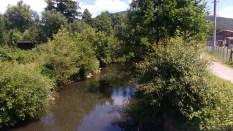 Kleiner Fluss mit Büschen am Ufer