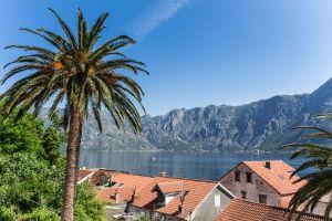 Blick über die Dächer auf die Bucht von Kotor
